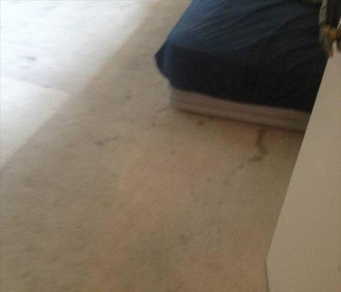 Carpet Stain and Spotting Removal Before