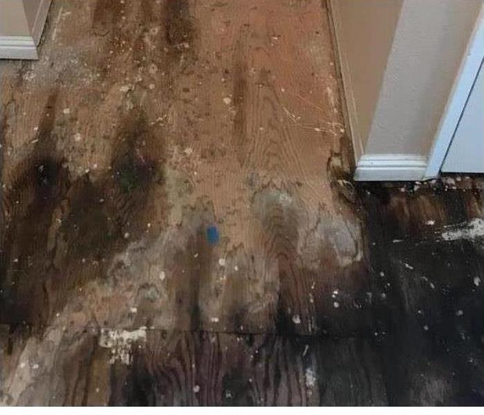 water damage to the floor.