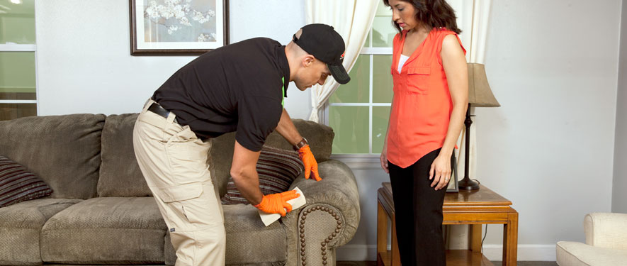 San Jose, CA carpet upholstery cleaning